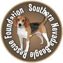 Beagle Rescue - BEAGLE UNIVERSE